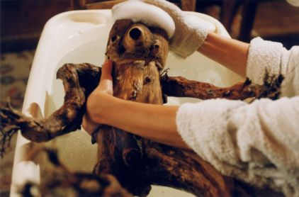 Otesanek en baño