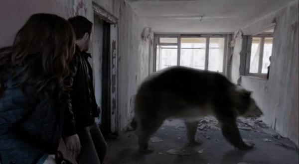 la respuesta correcta es este oso.jpg