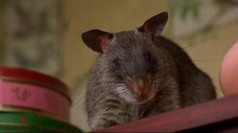 ben la rata asesina vegetariana con filo.jpg